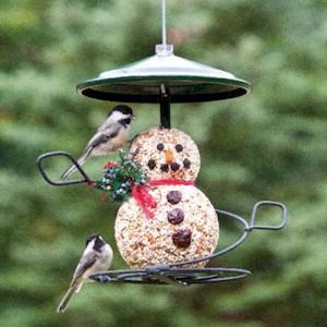 Black-capped Chickadees on Snowman Seed Cylinder